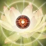 lotus-healing-heart2